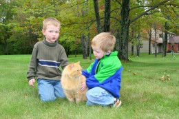 The death of a pet is upsetting for the whole family, and young children struggle with the permanence of the situation. My older son loves to look at pictures of our cat Pete, like this one, to remember his well-loved kitty cat.