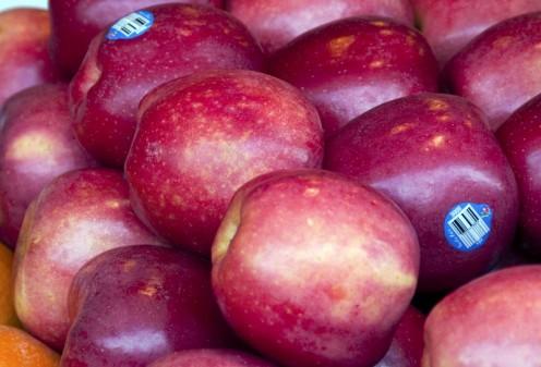 Apples. Apples, Apples