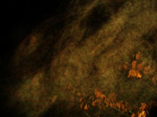 Night flight!  Etherial mist captured on nikon digital S.L.R.