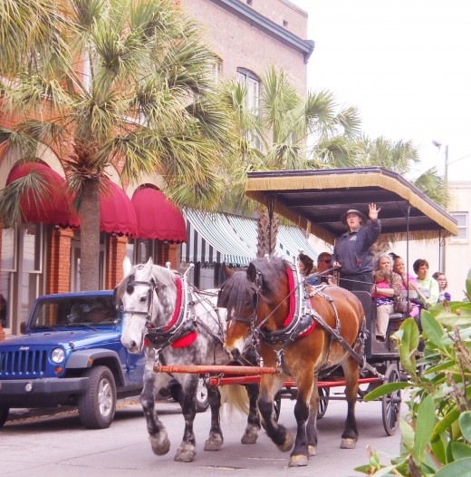 A horse drawn carriage riding through Savannah's beautiful Telfair Square where the 2012 Savannah Book Festival was held.
