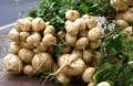 "Vegetables On Philippine Folk Song ""Bahay Kubo"" (Nipa Hut)"