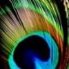 etios profile image