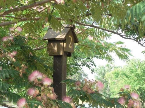 Original Bluebird House in Pappy Elkins Park