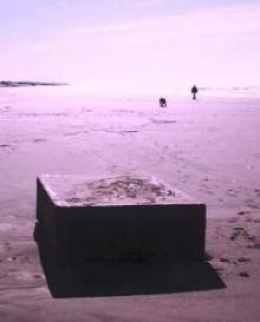 Is this a strange alien object? Is it a Chinese Naval secret weapon? Or is it a dock float?