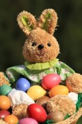 10 Things You Didn't Know About The Easter Bunny