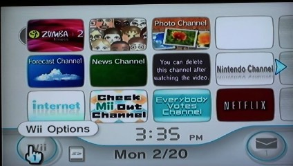The Wii Options button is located in the lower-left corner of the Wii home screen.