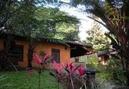 View in Kaliandra Sejati