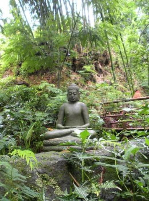 Buddha statute in the Jungle.