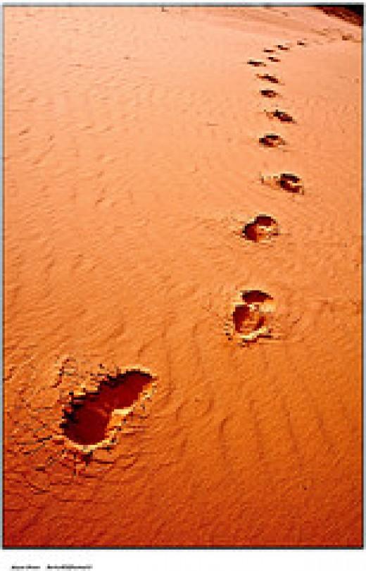Desert from Moyan_Brenn (I'm Back) Source: flickr.com