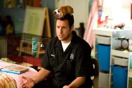 Skeeter tells a bedtime story with a guinea pig on his head.