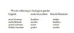 Grammatical and Biological Gender in Spanish