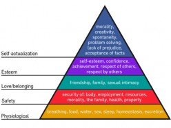 Abraham Maslow: His Contributions to Psychology