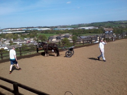 Local lads getting a horse trained.