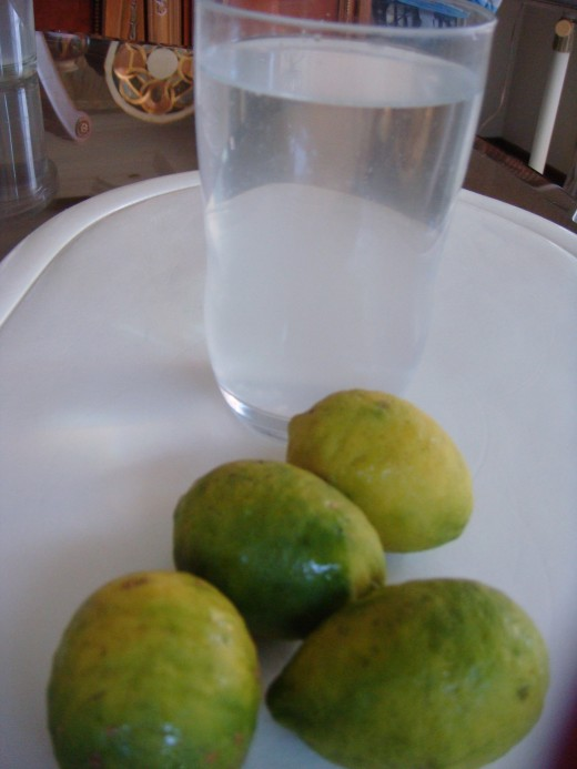 This is how our local lemon or lime looks like. I drink this formula if we could have a supply of lime.
