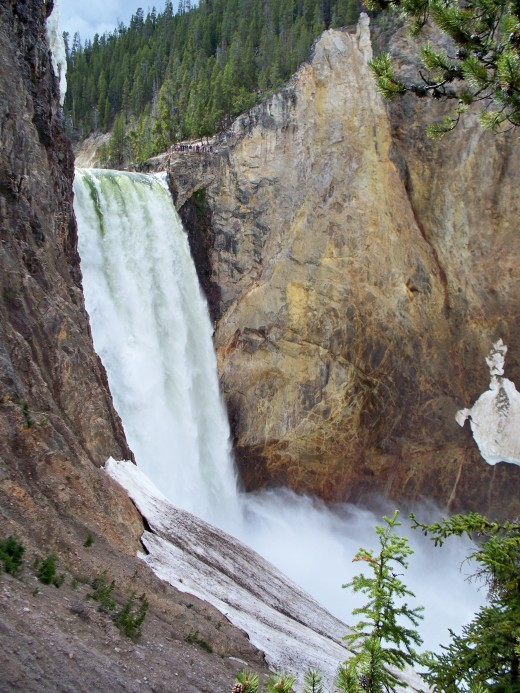 Lower Yellowstone Falls from the bottom of Uncle Tom's Trail