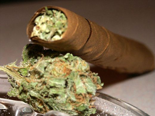 """A """"Blunt"""" is marijuana rolled in a cigar paper which makes the marijuana burn slower. Named """"Blunt"""" from the brand name Philly Blunts Cigars"""