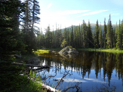 along trail to Pear Lake, Rocky Mountain National Park