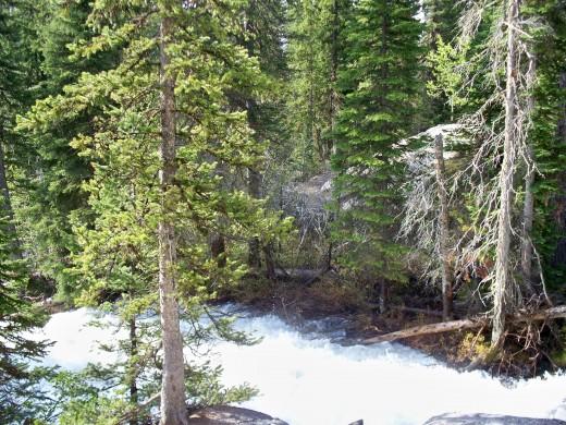 Hike to Hidden Falls
