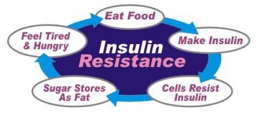 How insulin resistance develops?