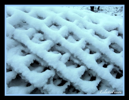 Snow on fencing.