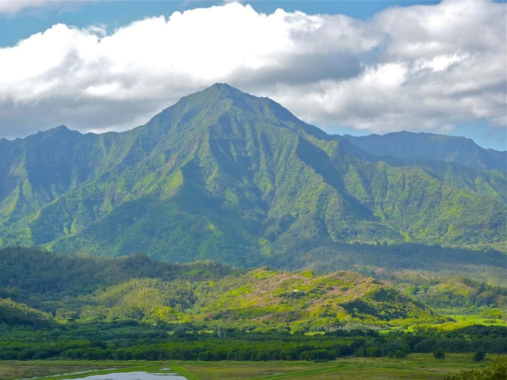 filming blockbuster movies in kauai  hawaii