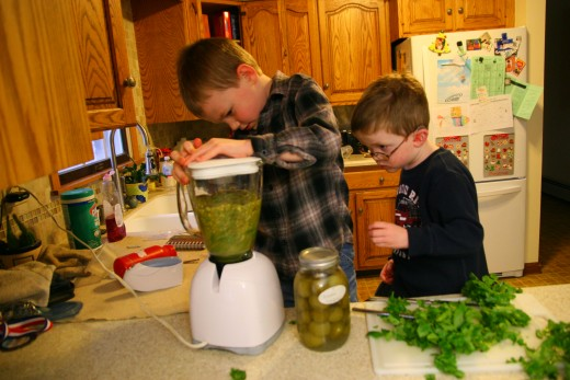 My six year old son presses the button to blend the tomatillos, garlic, jalapeno, and cilantro.