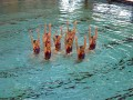 Nevada Desert Mermaids ~ A National Synchronized Swim Team