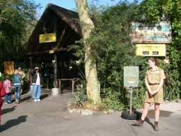 """Entrance to Kilimanjaro Safaris.  There are many """"rangers"""" who can direct you to where you want to go."""