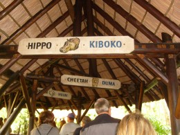 Learn the East African language of Harambe while you wait to go on your safari!