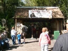 Entrance to Pangani Trail