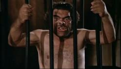 John's Horror Banana-nanza Episode Thirty-One: The Beast in Heat