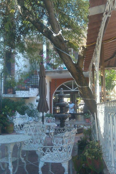Cafe Flor de Michoacan