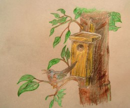 Hang your finished birdhouse and watch as the birds set up house!