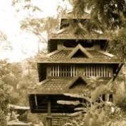 ezinedata profile image