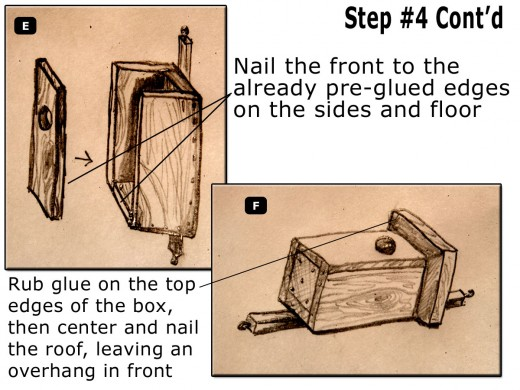 Nail and glue the edges of the sides and floor. Then center the roof onto the top of the box's preglued edges then nail so that the roof overhangs in front.