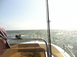 Looking at the Gulf ahead