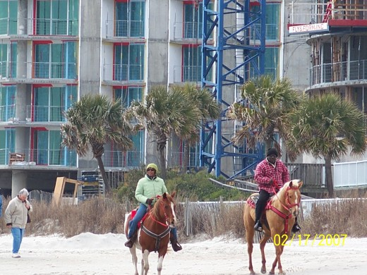 Horseback Riding on Myrtle Beach