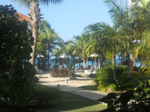 Couple's Swept Away in Negril, Jamaica