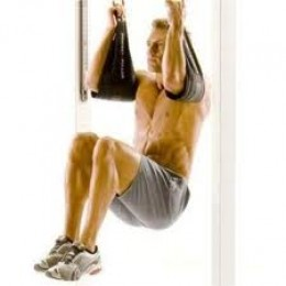 (Perfect Pullup Ab Straps)