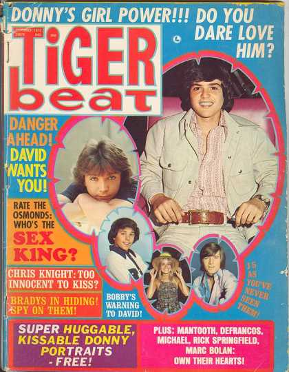GOOD OL' TIGER BEAT. KEEPING THE TEENS UPDATED ON THE LATEST BREAK-UP'S AND FASHION TRENDS. YOU CAN DO THAT ON MTV.