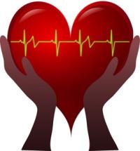 Decreases LDL Cholesterol