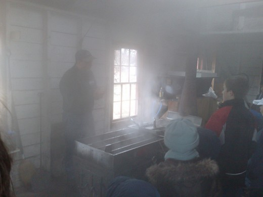 A great deal of steam is created in the sugar shack as sap boils down to maple syrup