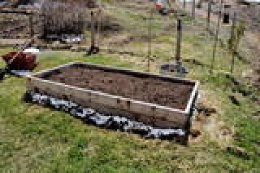 A prepared raised bed, with rich compost and aged manure in the soil mix. Ready to plant food in.