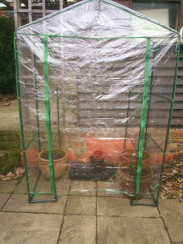 Grow seeds in a portable green house