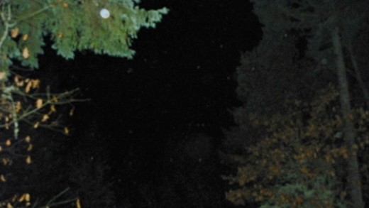Clear and dark, spirit generated Orbs fill the night sky of Oregon Orb House