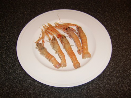 Fresh langoustines - would you incorporate them in a stew?