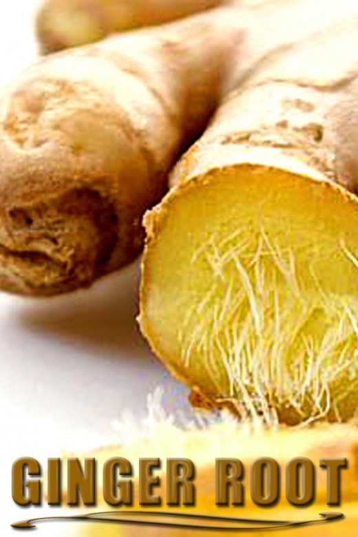 Ginger is fantastic for an upset stomach in dogs and humans!