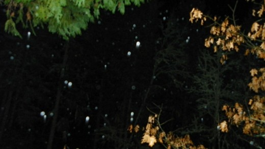 Spirit generated orb images captured in a snow fall. Note the directional change as well as the shape.