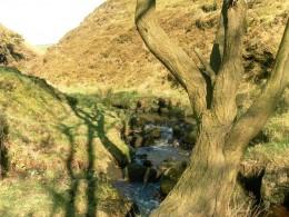 Pudsey Clough, Lancashire