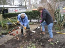 Embassy Volunteers at Thrive's Battersea Garden Project